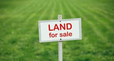 Land Wanted!